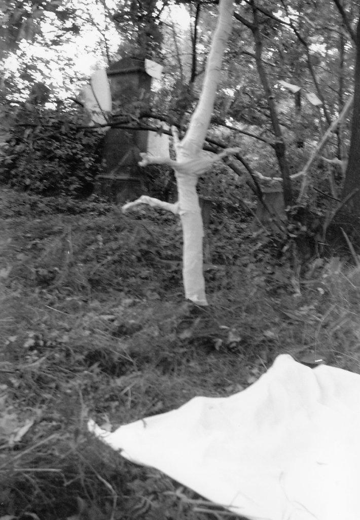 """""""Eingewickelter Baum"""", 1. Freilandaktion, jüdischem Friedhof im Oderbruch, 1979"""